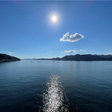 瀬戸内海を一望できます。船の往来を見ていると癒されます