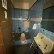 男性用トイレと和式トイレの二か所あります