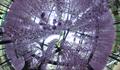 2018/05/24 360度 撮影するカメラ「RICOH THETA」