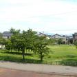 バルコニーからの眺望(向かいに公園があります)