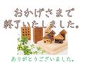 2019/10/17 山王2丁目・新築戸建角地・New写真UP♪