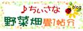 2021/06/21 【ブログ】2021この花の野菜名は??